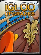 Igloo Upgrades August 2008