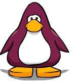 File:MaroonPenguin.jpg