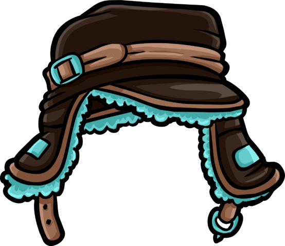 File:Brown Teal Cap icon.png