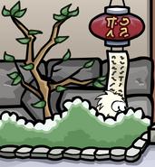 White Puffle At Dojo