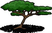Acacia Tree sprite 001
