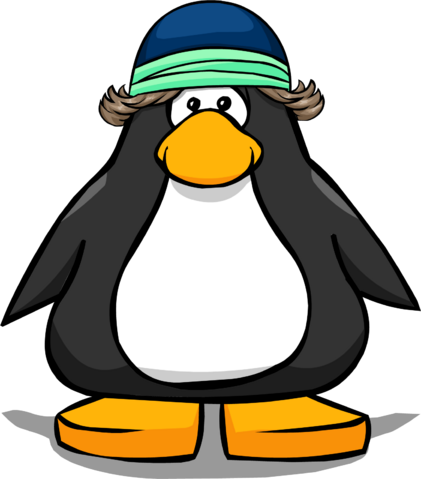 File:Cool Ski Beanie from a Player Card.PNG