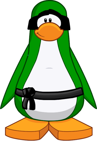 File:Green Ninja Custom.png