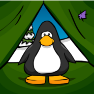 Tent Background from PC