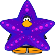 Starfish Costume on a Player Card