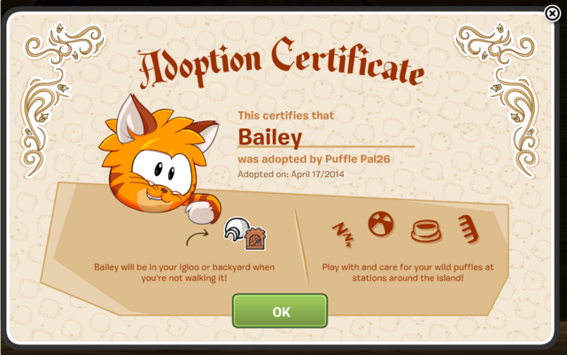File:Kitty Kit Certificate.png
