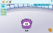 Purple puffle caring card