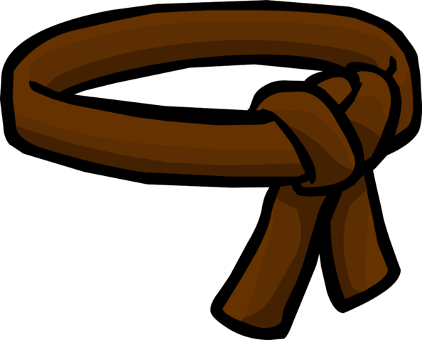 File:Brown Ninja Belt icon.png