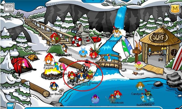 File:Water-party-at-the-cove-club-penguin-party-planner-3303697-1186-712.jpg