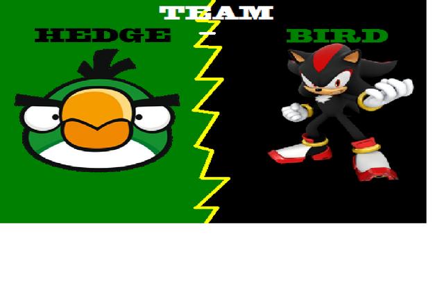 File:Team Hedgebird!.png