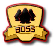 BOSSSSS