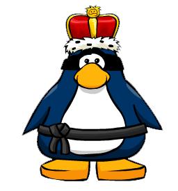 Kaiser Swiss Ninja
