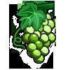 White Grapes-icon