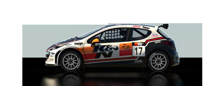 DiRT Rally Peugeot 207 S1600