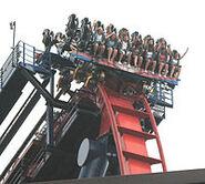 200px-SheiKra (Busch Gardens Africa) 02