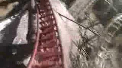 Rita - Alton Towers - OnRide - 240p