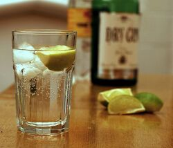 700px-Gin and Tonic with ingredients