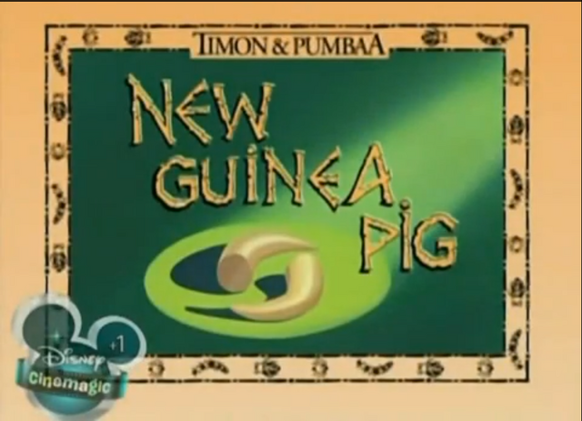 File:New Guinea Pig.png