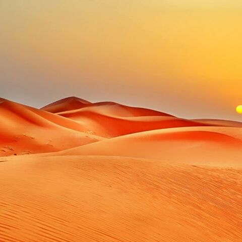 The desert of Egypt.