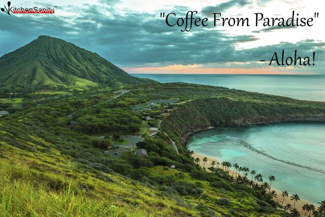 File:Coffee-from-paradise2.jpg