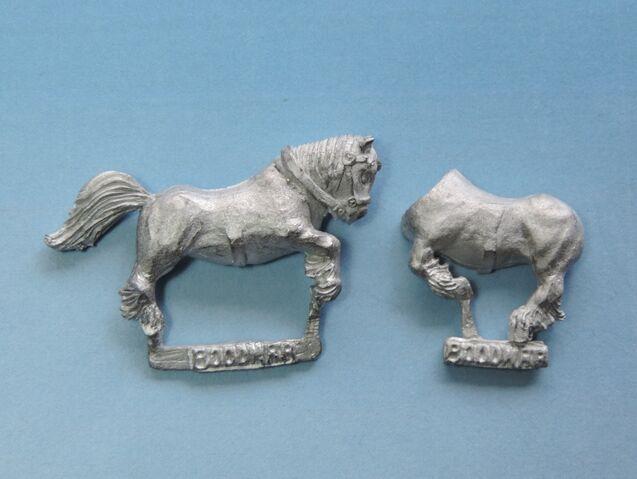 File:Bood Pony 5.jpg
