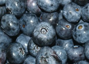 File:581612 blueberries.jpg