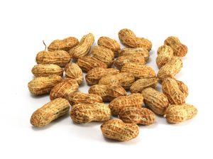 File:1020244 peanuts.jpg