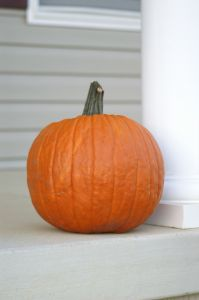 File:980835 pumpkin.jpg