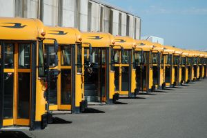 1015489 school bus