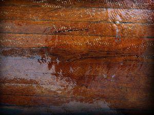 File:1005469 red wood.jpg
