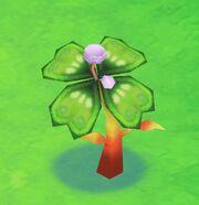 Clovertree2harvest
