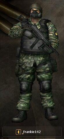 File:Combat-Arms 95.jpg