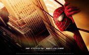 Spider-man-world-trade-center-photo