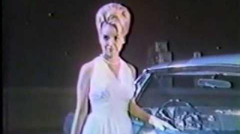 1966 Oldsmobile 88 Commercial