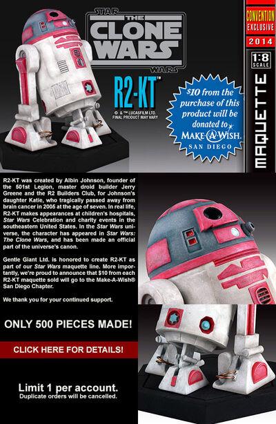 2014exclusive R2-KT
