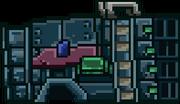 Pequeno-R25