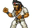 Kongfu Warrior