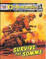 4927 survive the somme.jpg