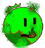 Limebigberry