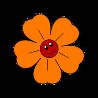 New Warmflower