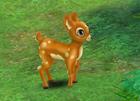 File:Little Deer.jpg