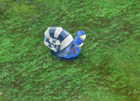 Snowy Snail