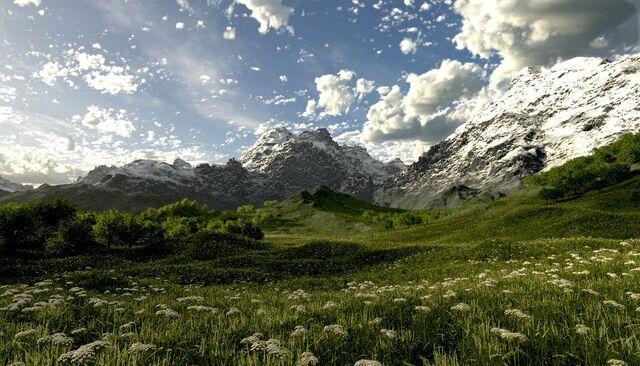 File:Northernforests heliothor.jpg