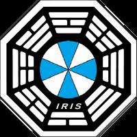 IRIS Initiative 1