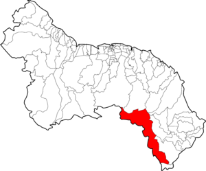Laranjal do Jari municipality map
