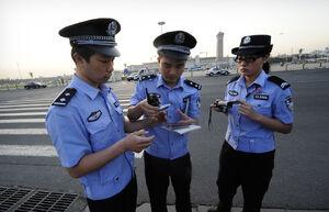 Lannese police 1