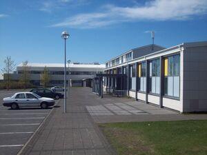 WestlandicSkoll