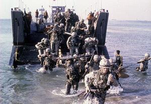 Barakat marines in the Sinai