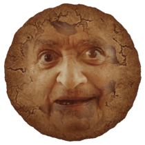 ImperfectCookie.png