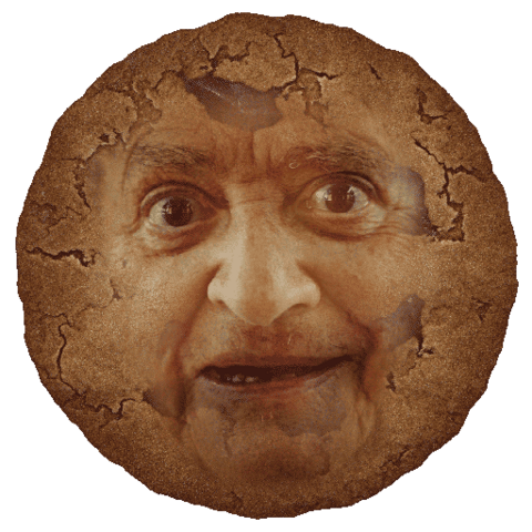 Файл:ImperfectCookie.png